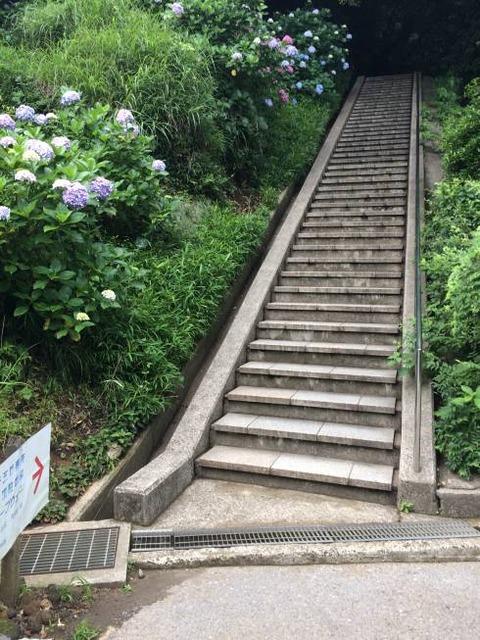 鋸山 ロープウェー方面への階段