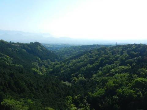 三島スカイウォーク 吊り橋からの景色